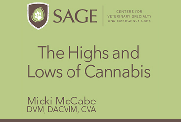 The Highs and Lows of Cannabis