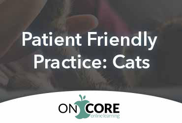 Patient-Friendly Practice: Cats